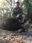 350 pound hog hunt