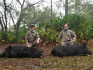 Double Hog Hunt