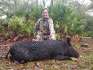 Rifle Hog Hunt