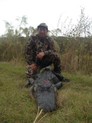 Florida Alligator Hunting