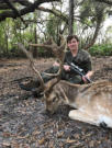 Florida fallow deer hunts